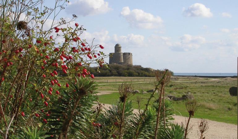 Ile et fort Vauban de Tatihou-2